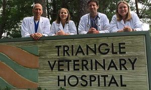 about triangle veterinary hospital